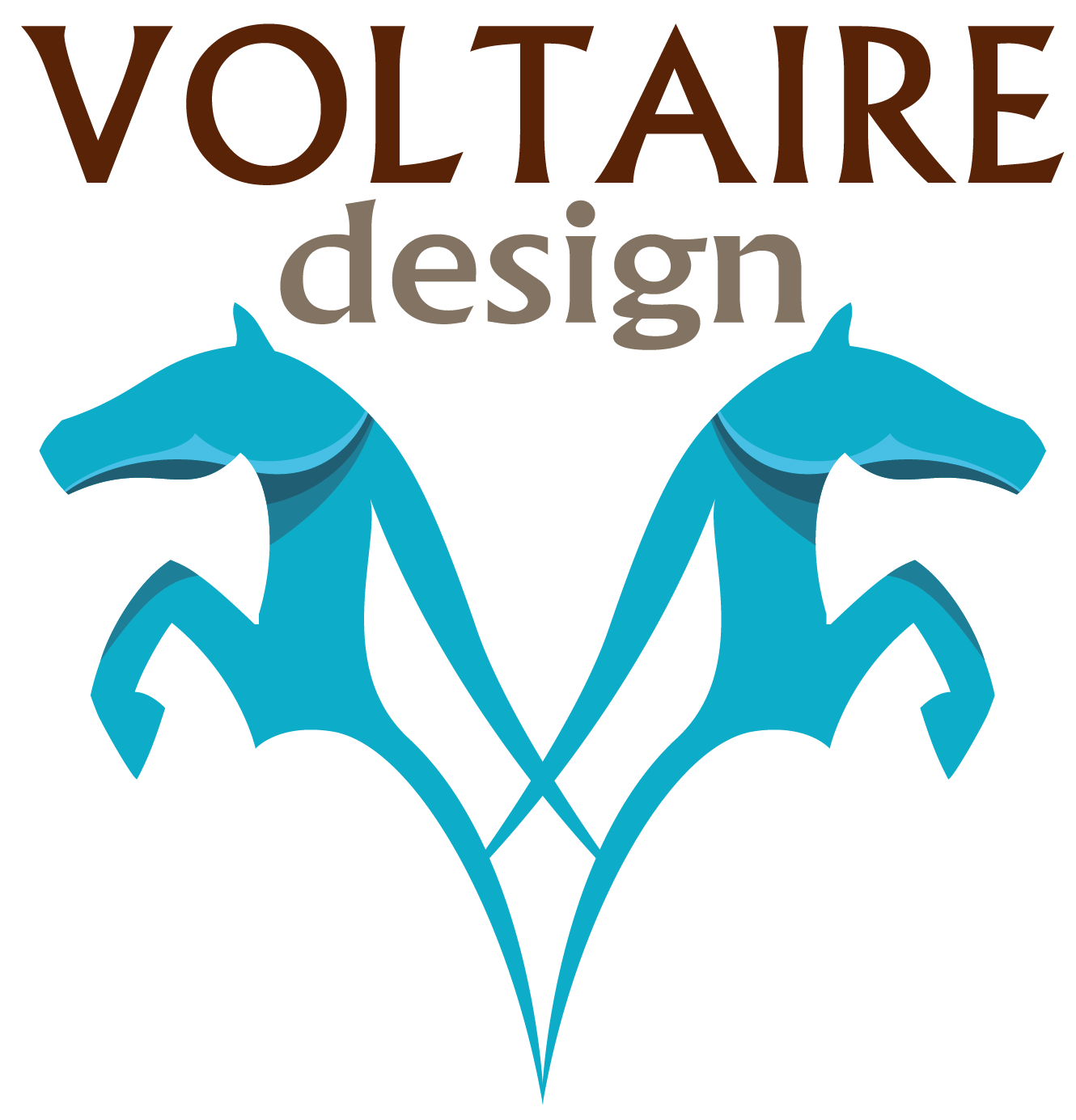 Blog Voltaire Design